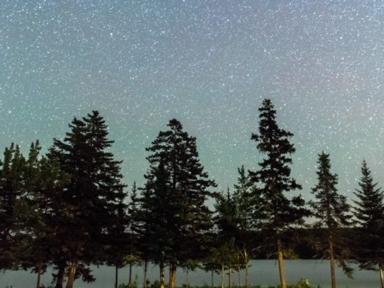 Stars at night at the Moose River Outpost